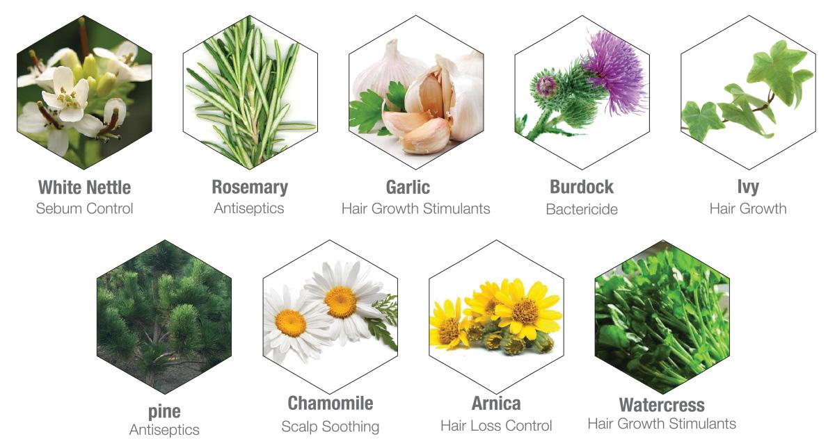 9-herbals